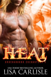 Book Cover: HEAT (a gargoyle shifter romance)