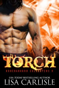Book Cover: TORCH (a gargoyle shifter / werewolf romance)